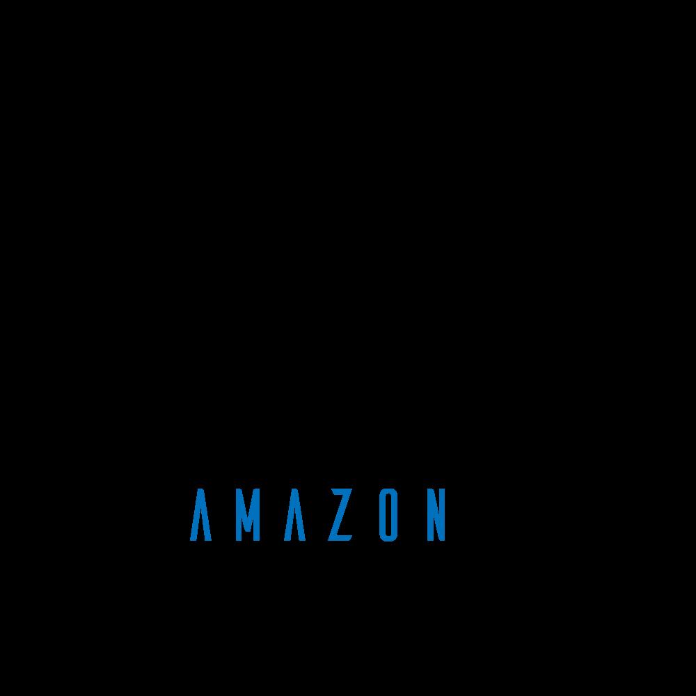 Amazon Digital Solution – Hostnet Manaus